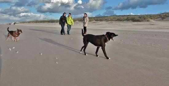 Rennen op het strand - Ben Biondina